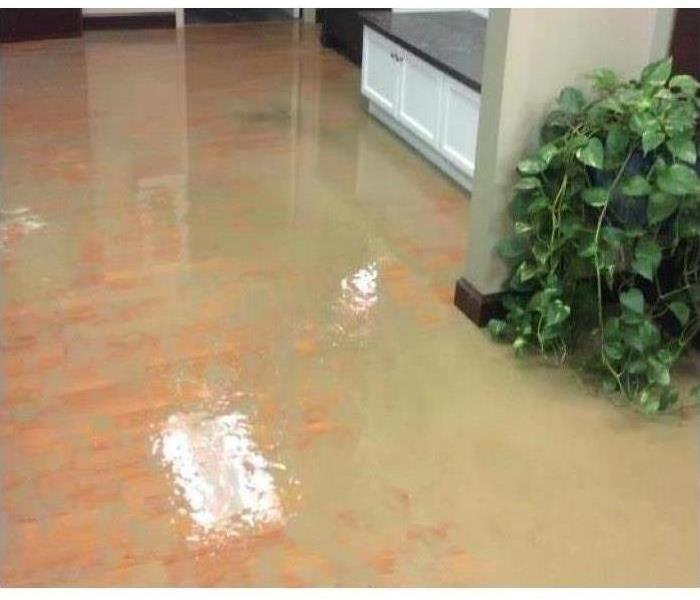 Flooded Building Cleanup After