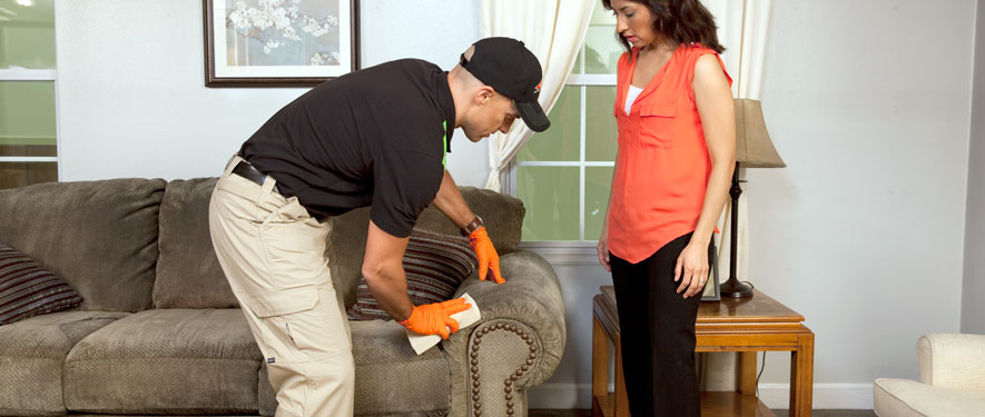 Watsonville, CA carpet upholstery cleaning